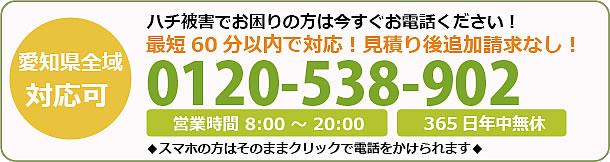 熊本県蜂駆除・巣の撤去電話お問い合わせ「0120-538-902」