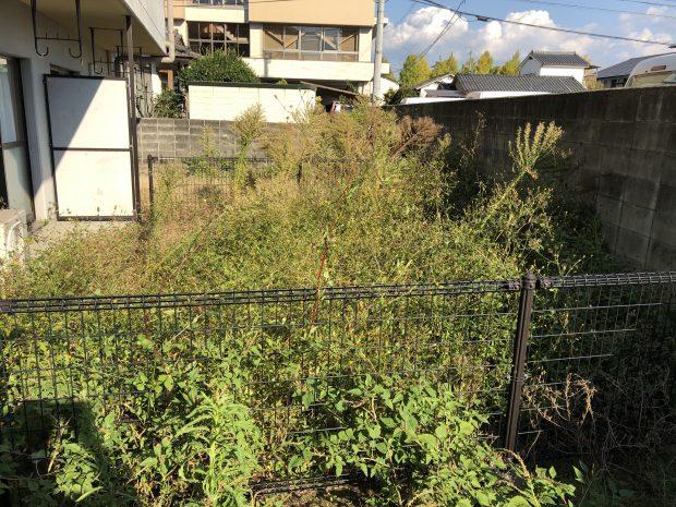 【熊本市中央区】草刈りのご依頼☆肩まで伸びた草もあっという間に刈り取り、作業の早さにご満足いただけました!